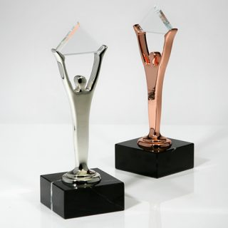 NICE Wins Two Stevie Awards for Customer Service at Annual Industry Gala